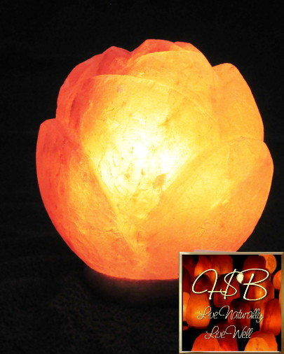 Hand Carved Himalayan Salt Lamps