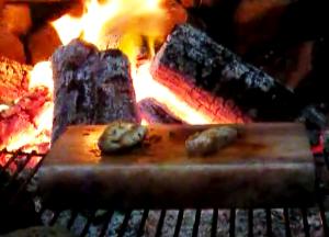 Salt Grilled Coconut Rum Mahi Mahi