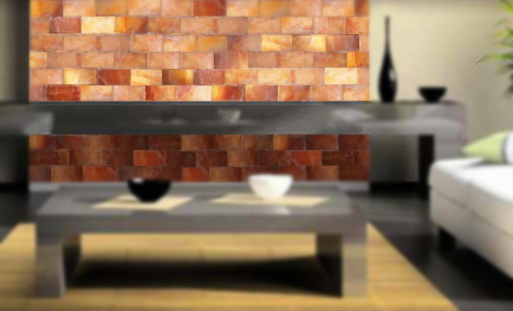 Salt Wall Blocks Bricks